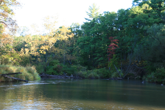 Pere Marquette River - WestMichiganFlyFishing com | Jeff