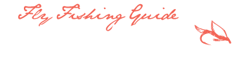 WestMichiganFishingGuide.com | Jeff Bacon Muskegon River Steelhead Fishing Guide