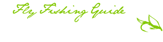 WestMichiganFlyFishing.com | Jeff Bacon Muskegon River Steelhead Fishing Guide