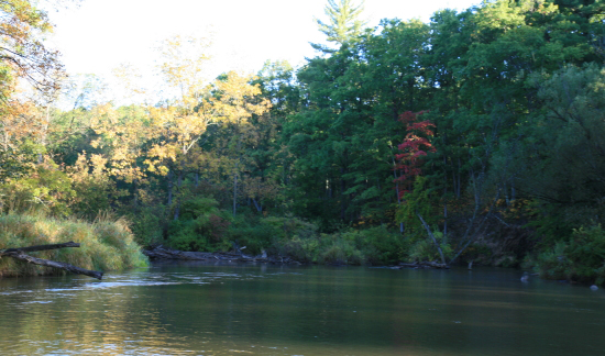 Pere marquette river jeff for Best shore fishing in michigan